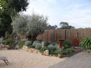 LA-CAVA-Gartengestaltung-mit-Sichtschutz