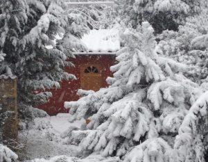 LA-CAVA-Gartenhaus-im-Winter