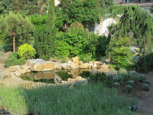 LA-CAVA-Gartenteich 822