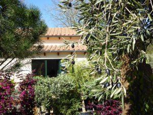 LA-CAVA-buero-mit-terrakottadach