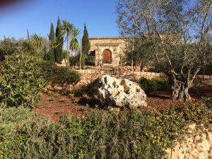 LA-CAVA-mediterrane-Gartenanlage